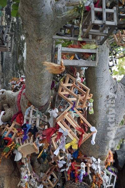 Šrí Lanka - Trinkomalé - symbolické kolébky na skále Swami