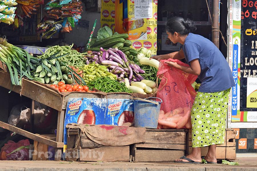 Šrí Lanka - Habarana