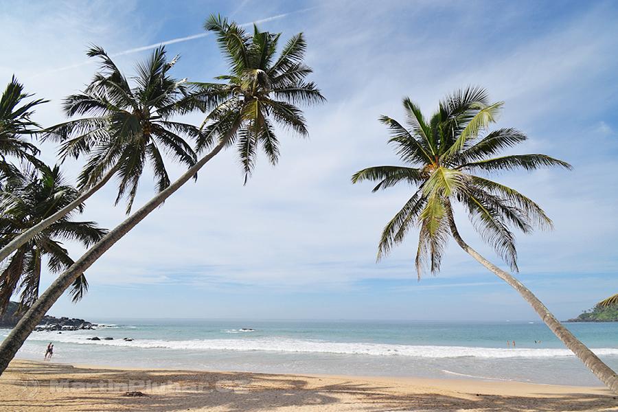 Mirissa - Mirissa Beach