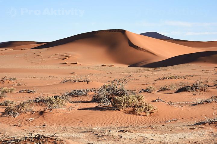 Namibie - okolí parkoviště u Sossusvlei
