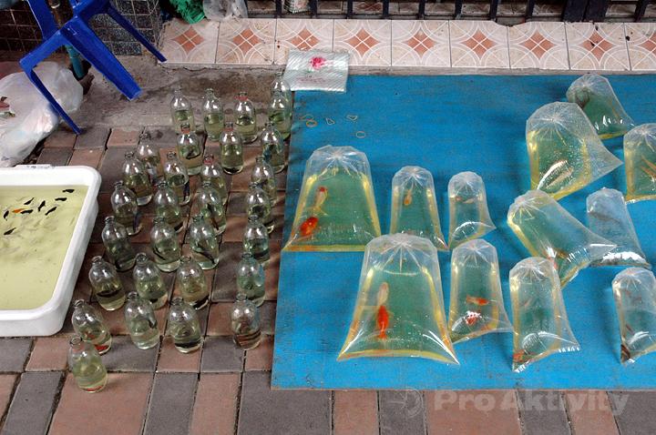 Thajsko - Sungai Ko-Lok - prodavačky