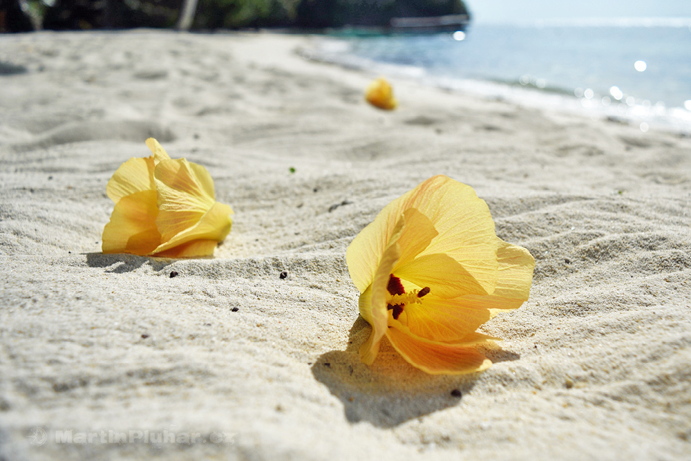 Togianské ostrovy, ostrov Malenge, pláž Malenge Indah