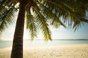 Moluky, Keiské ostrovy - Malý Keiský ostrov - pláž Pasir Panjang při západu slunce