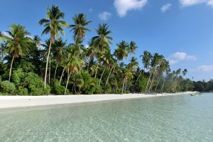 Moluky, Keiské ostrovy - Malý Keiský ostrov - pláž Pasir Panjang z moře