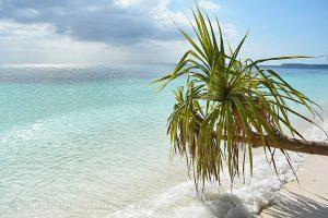 Moluky, Keiské ostrovy - Malý Keiský ostrov - pláž na severu