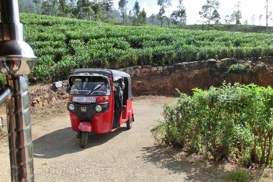 Radella - Jízda tuktukem