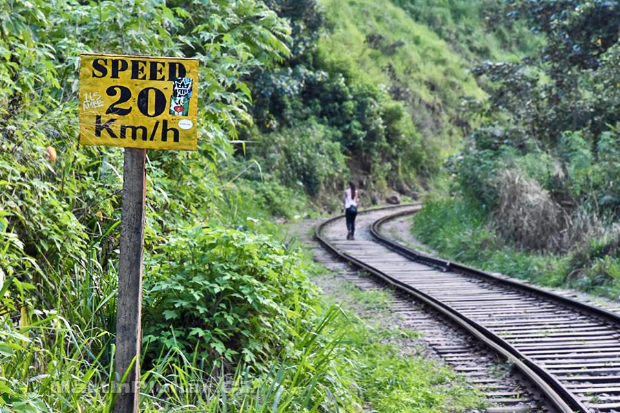Kithalella - Vlaky tady moc rychle jezdit nesmí