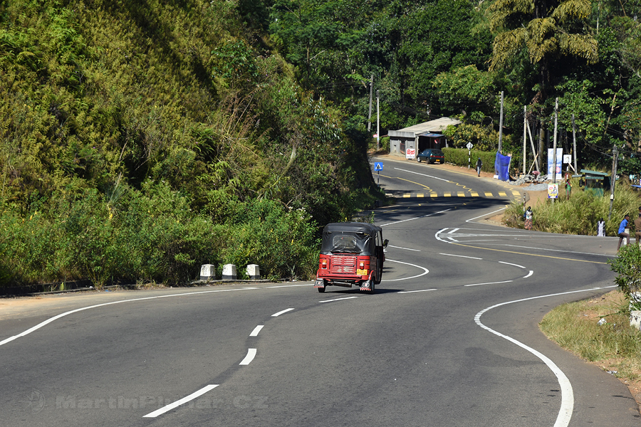 Dimbula - Cestička do Dimbully, známě se vine...