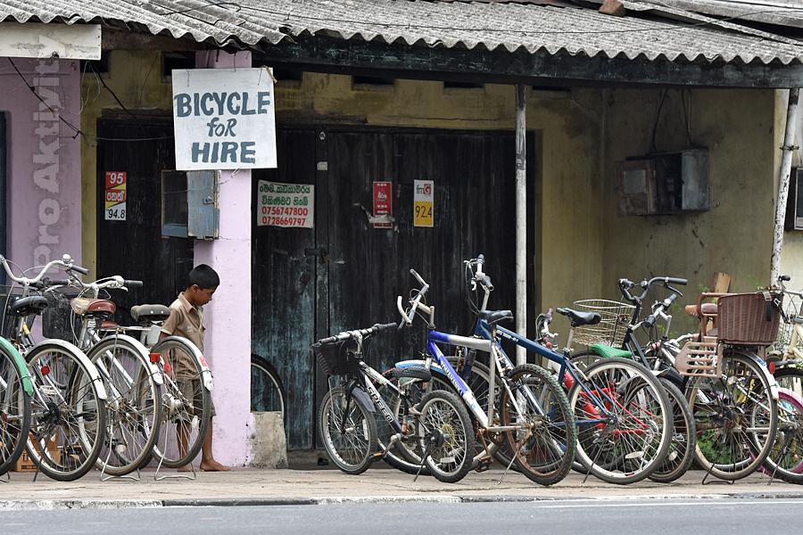 Šrí Lanka - Polonnaruwa - půjčovna kol