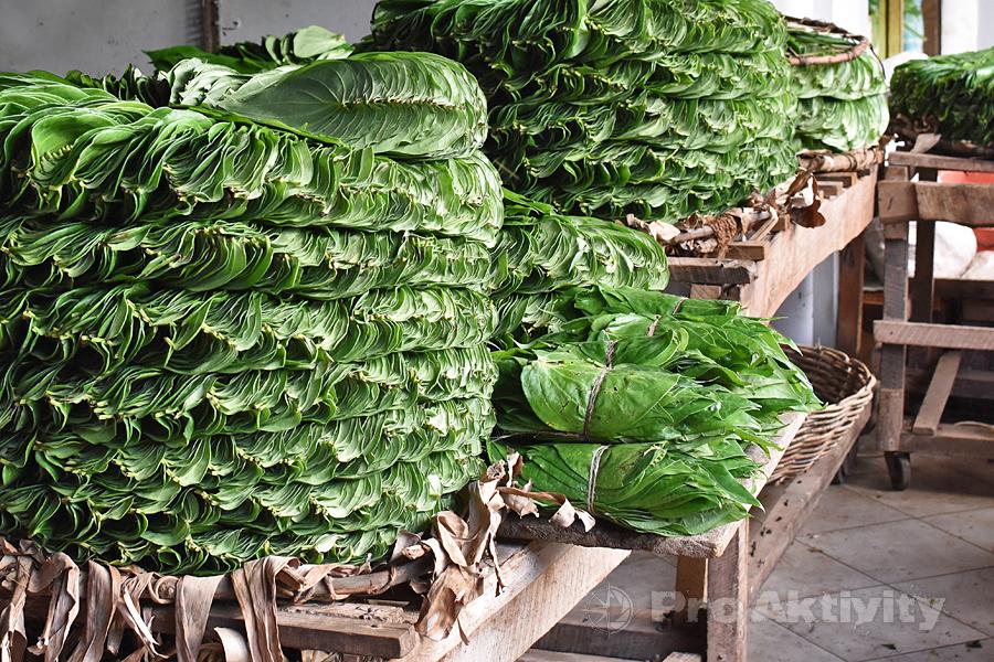 Šrí Lanka - Anurádapura - stánek s betelovými listy