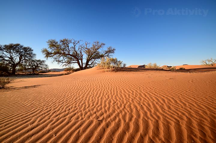 Namibie - Sesriem - okolí parkoviště u Sossusvlei