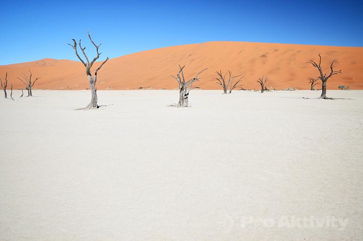 Namibie - Sesriem - Deadvlei