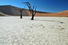 Namibie - Namib Naukluft Park