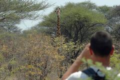 Botswana - Maun