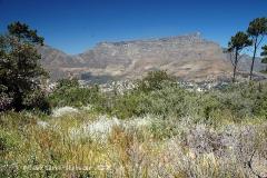 JAR - Kapské město