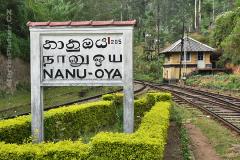 Nanuoya