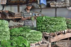 Anurádapura - stánek se zeleninou